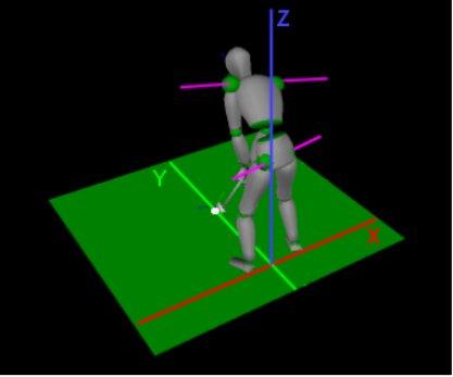 biomechanics of the golf swing essay